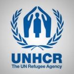 نگاهی به سیر پناهندگی در جهان