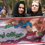 تجمع اعتراض به کشتار سگها , روز جمعه ۱۴ آذر , ساعت ۱۱ تا ۲ در پارک ملت تهران