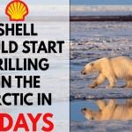 شرکت نفتى شل در هفت روز آینده حفارى در قطب را شروع میکند و این یعنى آخرین ضربه ها به محیط زیست