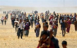 yezidisinjar