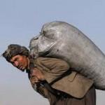 باردیگر ممنوعیت کار برای کارگران افغانستانی ها در ۱۶ استان کشور
