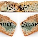 طرح :ذات اسلام مسموم کننده است