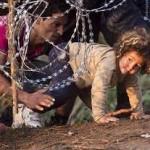 یوروپل، پلیس اتحادیه اروپا : هزاران پناهجوی کودک و نوجوان پس از ورود به کشورهای اروپایی ناپدید شدهاند