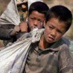 ویدئو شرم آور  و ظالمانه زندانی کردن کودکان افغان در قفس زباله بهخاطر سنگ زدن به درخت