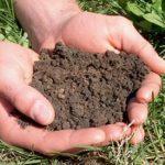 خاک های اطراف تهران آلوده و فرسایش سالانه خاک درایران ۱۶میلیون تن اما در جهان بین ۸ تا ۱۰ میلیون تن است