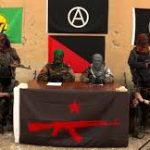 در باره آنارشیستهای فعال در روژاوا « نیروهای مردمی – بین المللی انقلابی گریلا » IRPGF