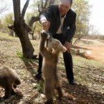 شکارچی خرس گرسنه در شهرستان مرودشت دستگیر شد