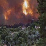 دستکم ۶۳ کشته و حدود ۶۰ زخمی در آتش سوزی جنگل ها ی پرتقال دولت سه روز عزای عمومی اعلام کرد