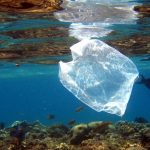 تولید، فروش و استفاده از کیسههای پلاستیکی در کنیا تا چهل هزار دلار جریمه مالی و تا چهار سال زندان دارد
