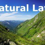 قانون طبیعی چیست و چرا ما ملزم به آموختن آن هستیم؟   #آنارشیسم_آلترناتیو_ممکن_است