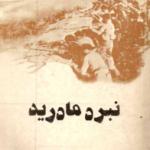 کتاب « نبرد مادرید»